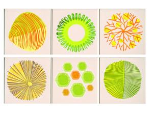 ceramiche fotografiche, disegni a spirografo